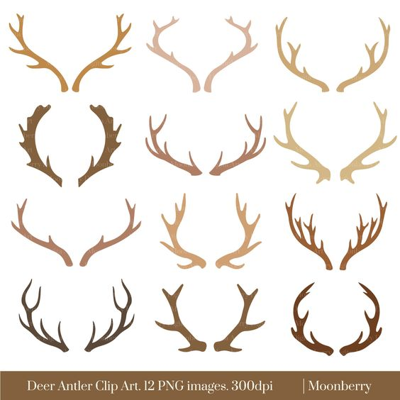 How To Make Deer Horns For A Costume Google Search Antler Drawing Deer Drawing Deer Antlers