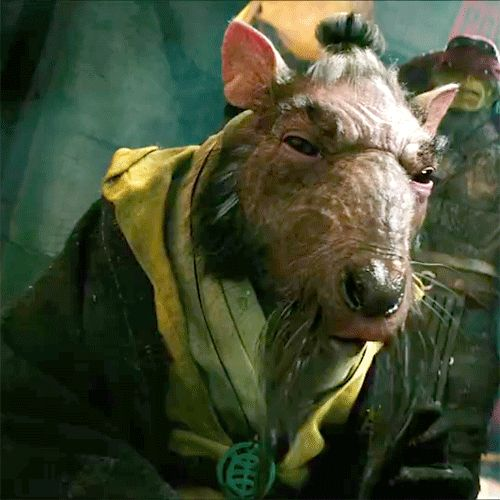 Master Splinter 2014 #tmnt