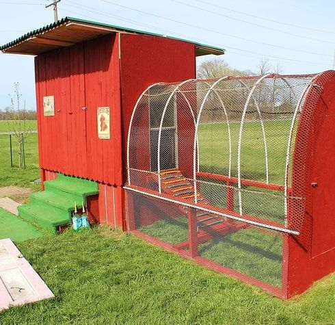 Coops chicken coops and chicken on pinterest for Red chicken coop