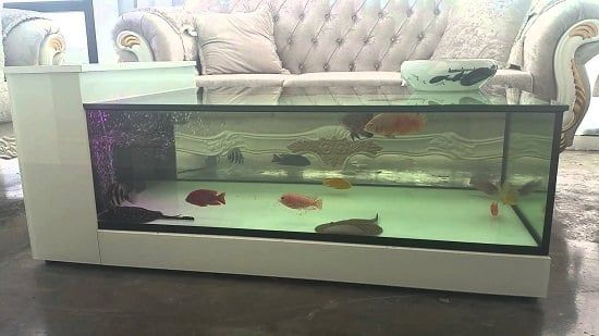 5 Awesome Ways To Repurpose A Fish Tank You Never Thought Of In 2020 Fish Tank Fish Tank Table Aquarium Coffee Table