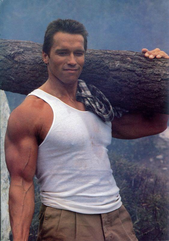 "Arnold Schwarzenegger | ... Filme ""Commando"" John Matrix (Arnold Schwarzenegger) View full size"