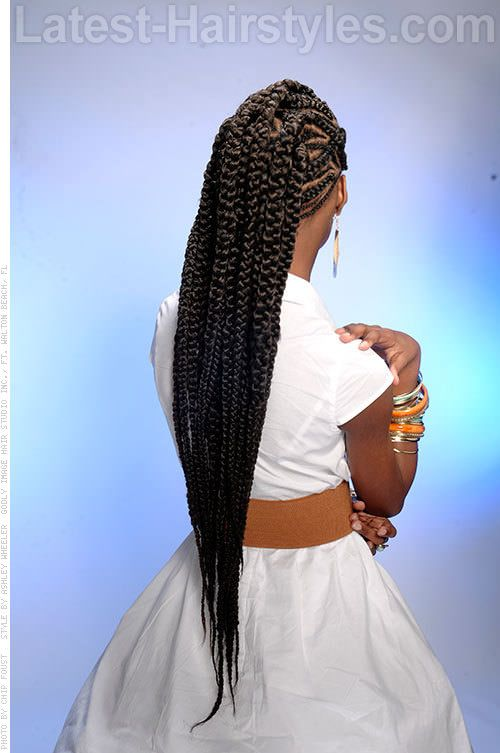 poetic braids glamorous look for long extensions back view