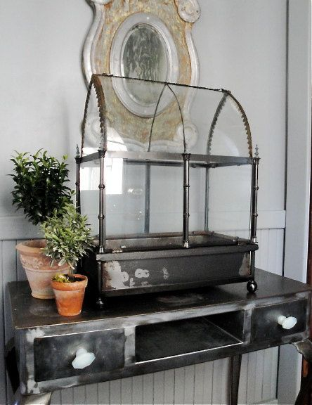 Glass Terrarium Wardian Case Cases Glasses And Plants