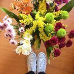 Final de semana começou florido