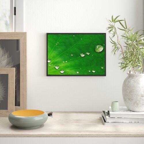Wassertropfen Auf Blatt Im Schattenfugen Bilderrahmen East Urban Home Grosse 70 Cm H X 100 Cm B Traditional Frames Art Prints Frame