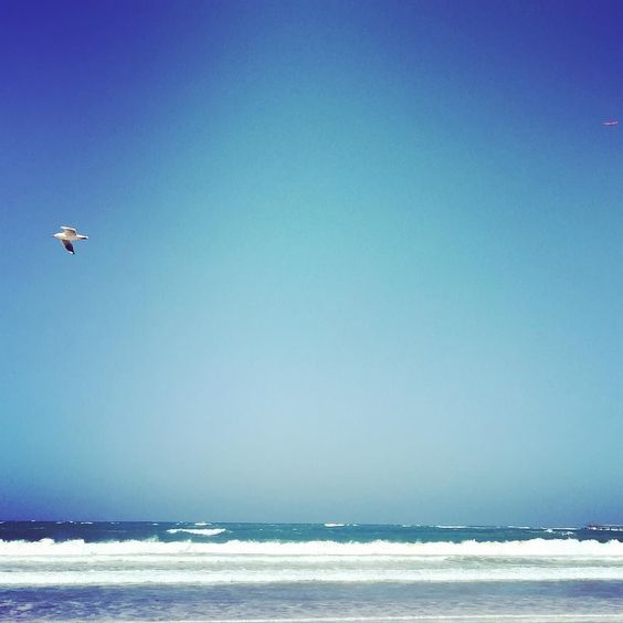 Seaside. #seaside #beach #seagull #lorne #greatoceanroad #Australia #victoria #holiday by plumbelly http://ift.tt/1IIGiLS