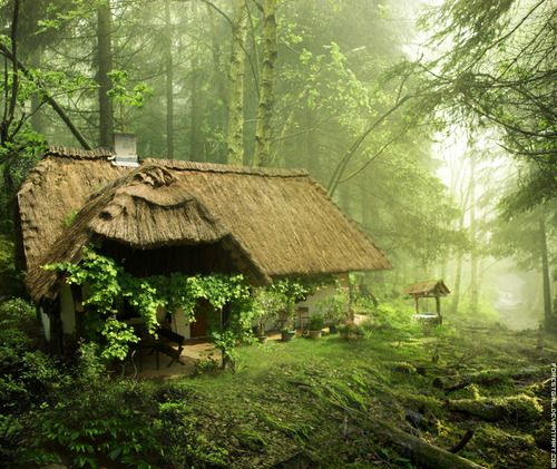 Fairytale Cottage In The Woods