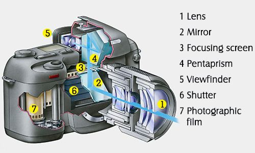 Basic Parts Of A Camera And Their Functions With Diagram Parts Of A Camera Camera Photography Basics