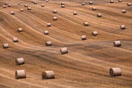 A História da Idade das Trevas e a Ocultação da Cabala