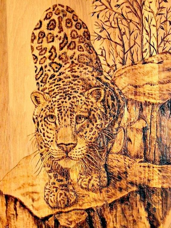 Wildlife Woodburning Patterns Designs Wood Burners