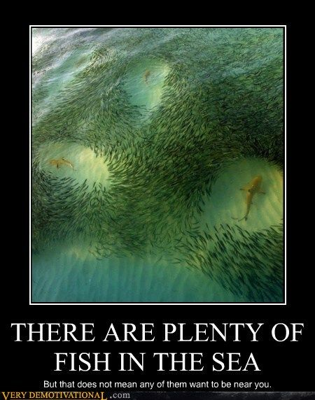 Demotivational posters fish and poster on pinterest for Plenty of fish in the sea