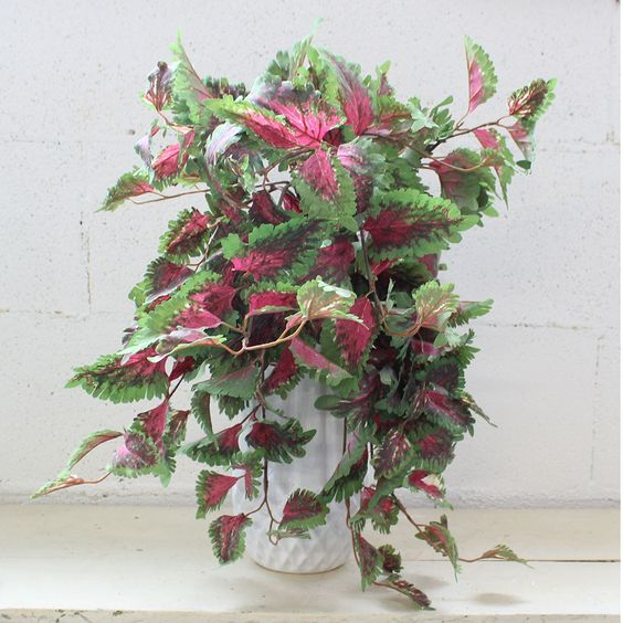 """Faux Coleus Hanging Bush in Pink and Green 14"""" Wide x 23"""" Long"""