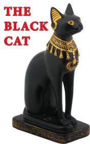 Tampa do livro O gato preto por John Milne     básico
