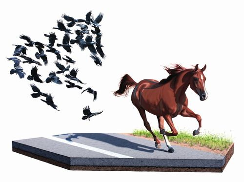 "Shadow by Josh Keyes  30""x40"", acrylic on panel, 2009"