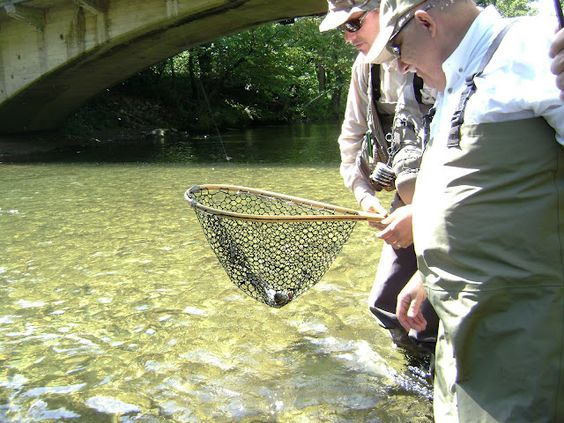 Pinterest the world s catalog of ideas for Cherokee trout fishing