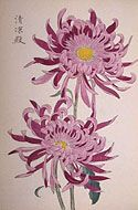 One Hundred Chrysanthemums