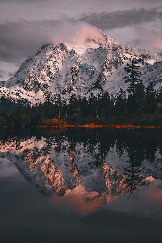 Gentlefawn Com Nature Photography Landscape Photography Nature