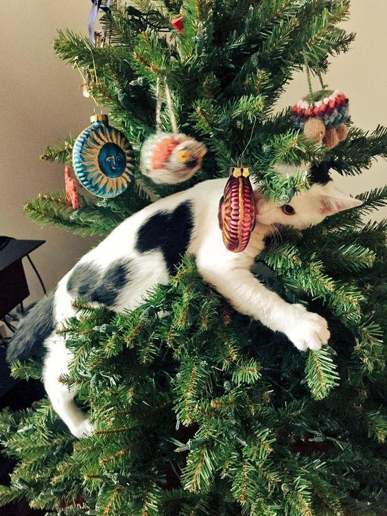 17 Best images about Ting jeg elsker♥ on Pinterest Kerst