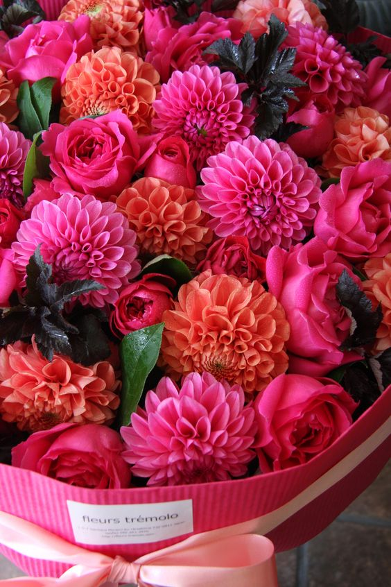 Fuchsia Pink, Coral Orange - Dahlias and Roses