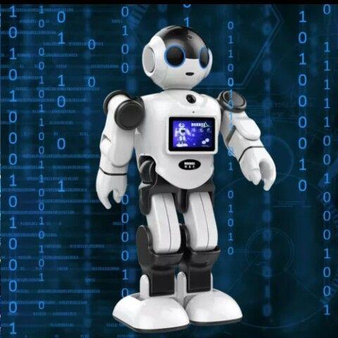 RK01 robot