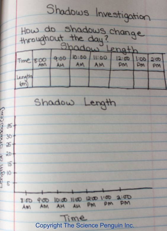 Shadows Investigation Interactive Science Notebook Photo