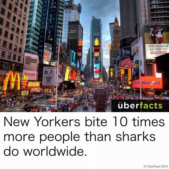 Guess I'll stay away from NYC!