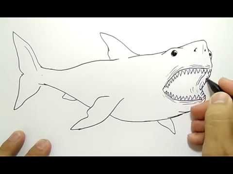 33++ Gambar Kartun Ikan Jerung di 2020 (Dengan gambar) | Kartun ...