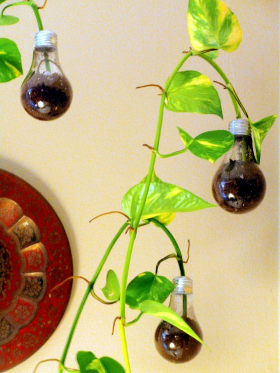 DIY Lightbulb Recycled Planters