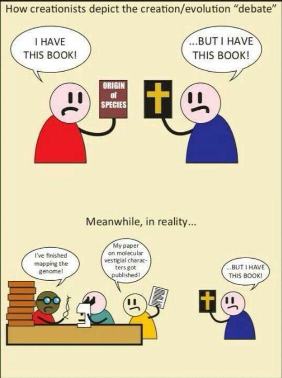 Term Paper? Book Choice PLEASE?