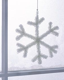 Make a crystal snowflake by suspending a pipe-cleaner snowflake in a solution of Borax overnight.  Science and art in one really cool project!
