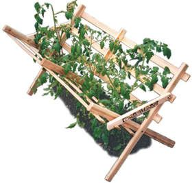I love this design... tomato support... trellis what ever you want to call it!
