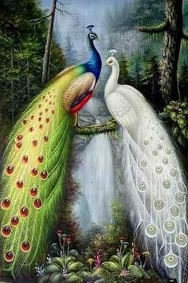 Two Peacocks Oil Paintings - China Oil Paintings: