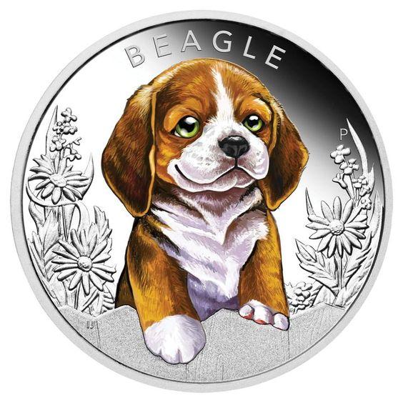 2018 50c Puppies Beagle 1 2oz Silver Proof Coin Munten