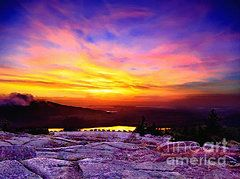 Bob and Nadine Johnston Metal Prints - Acadia National Park Cadillac Mountain Sunrise ForSale Metal Print by Bob and Nadine Johnston