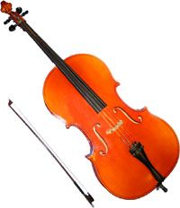 The Cello Is Much Larger And Lower Than Viola Must Be Played  cakepins.com