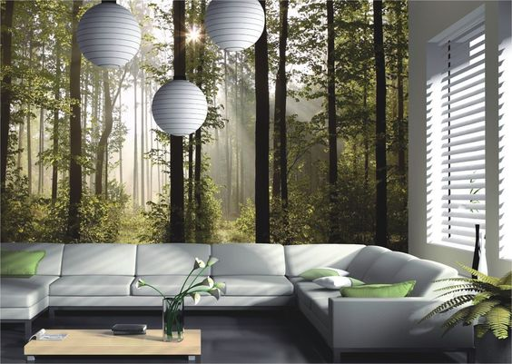 Fototapete Tapete Natur Wald Bäume Lichtspiel Foto 360 cm x 254 cm - wandgestaltung mit tapeten