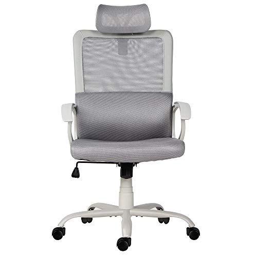 Sumgdesk Office Chair Mesh Office Chair Ergonomic Office Desk
