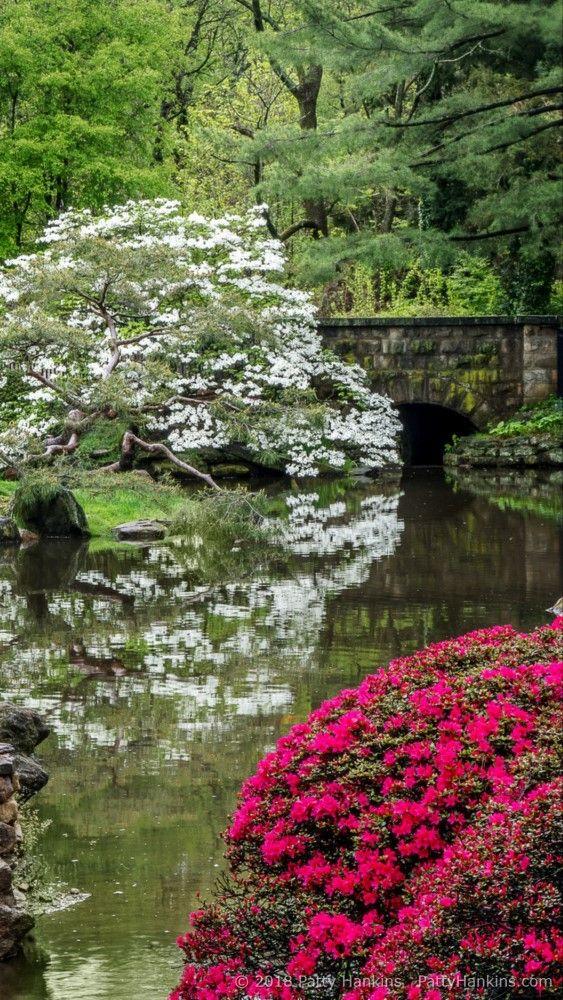 Matted photo of Garden in Philadelphia