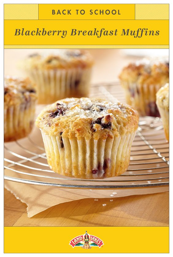 Blackberry muffin, Blackberries and Muffins on Pinterest