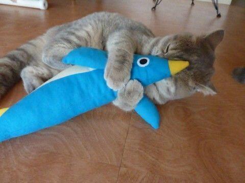 Love it! So I cuddles it!