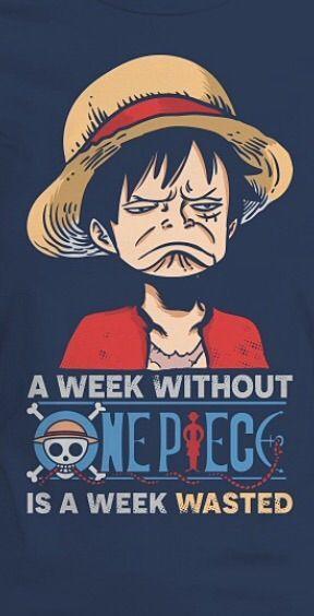 Năm nay chứng kiến một năm mà tần suất các chap One Piece bị break hơi nhiều