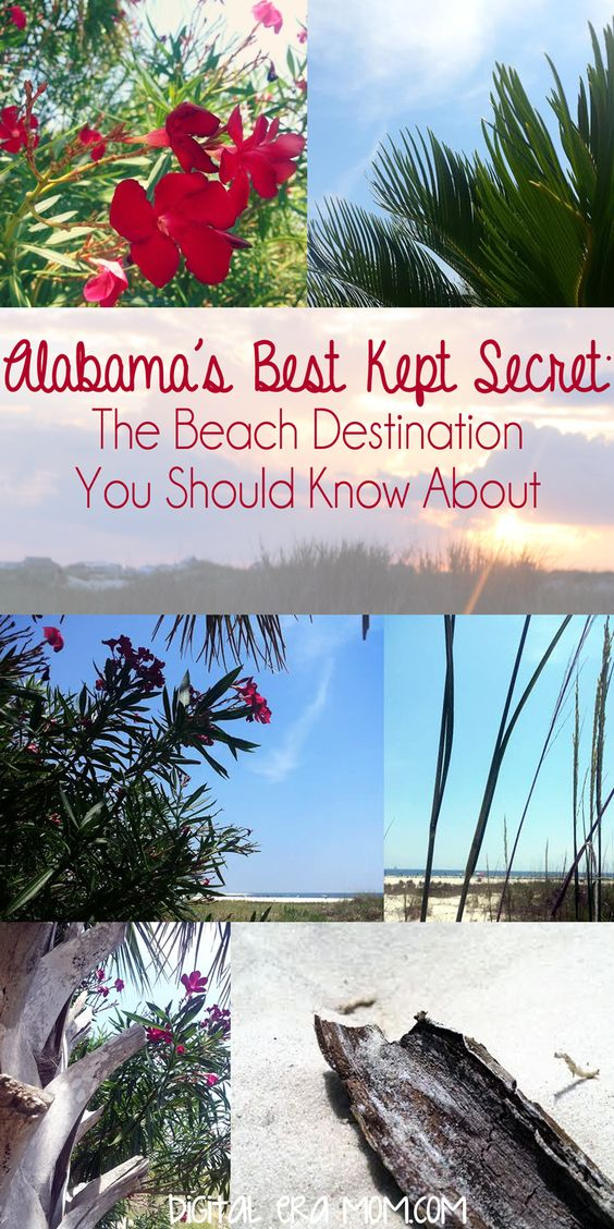 Looking for a perfect place to visit? This secret beach destination is perfect for your vacation. Affordable, with beautiful white sand beaches and no crowds, Dauphin Island, Alabama is the place to be!