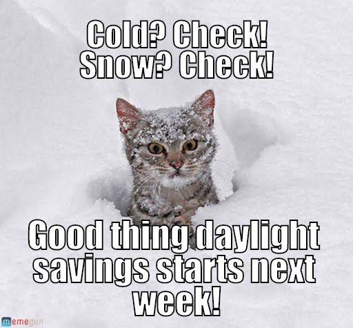 d627004f6216da72c9cc91eaca7c09fe snow meme jpg cats in snow meme ikrhag jpg cats in snow pinterest snow,Snow Meme Images