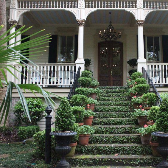 ivy clad steps