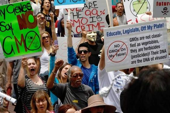 Protesters Rallied In Dozens Of Cities Saturday As Part Of A Global Protest Against Seed Giant Monsanto And The Genetically Modified Monsanto Gmo Gmo Labeling