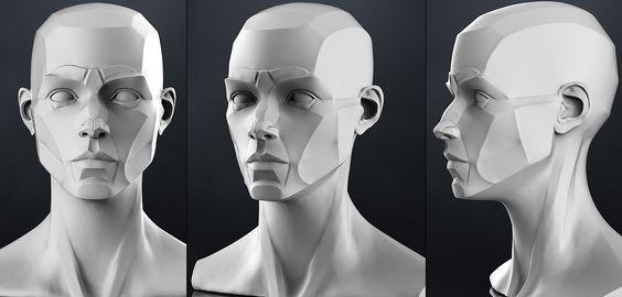 planes_of_the_head_-_female_3d_model_obj_b4bf82c1-e33b-4658-8447-4b8aca81d217.jpg 1.400×672 pixels