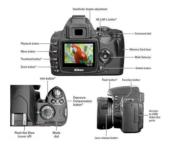 13 Super Useful Photography Cheat Sheets Web Design Ledger Nikon D40 Nikon Camera Nikon