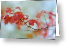 Early Autumn by Diane Alexander