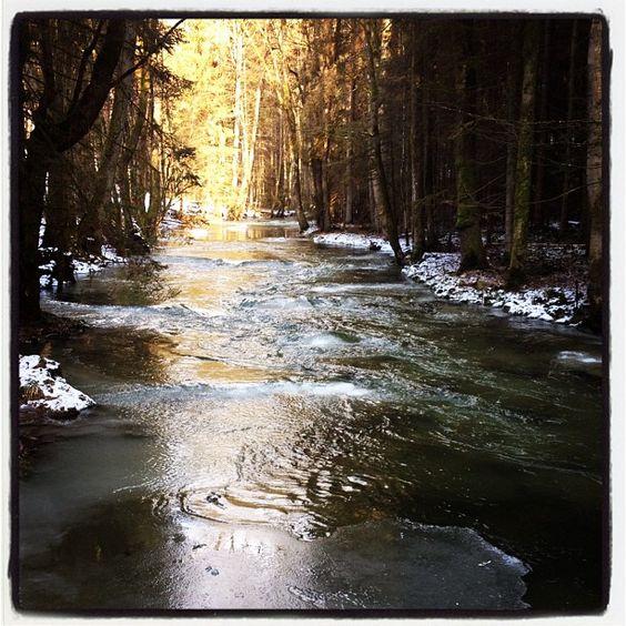 Traumwetter, Traumlandschaft - Bayerischer Wald #thisisbavaria ;-)