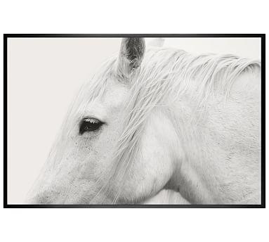 White Horse Framed Print by Jennifer Meyers #potterybarn